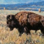 Buffalo 10 x 12 oil painting by Bill Sawczuk